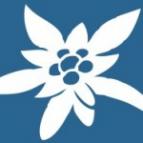 Логотип компании наркостоп