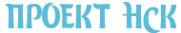 Логотип компании ПроектНСК