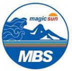Логотип компании МейджиксанНовосибирск