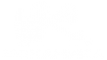 Логотип компании Механика автоцентр Dongfeng