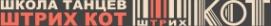 Логотип компании Штрих Кот