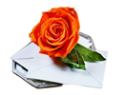 Логотип компании Цветы счастья
