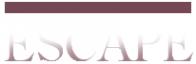 Логотип компании Escape