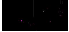Логотип компании Adrenalinerus ассоциация экстремальных видов спорта
