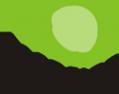 Логотип компании Deepsign