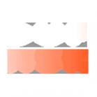 Логотип компании APPLE ACCESSORIES