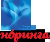 Логотип компании Святой Источник