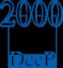 Логотип компании ДИИП 2000