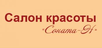 Логотип компании Соната-Н
