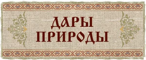 Логотип компании ТРИВИКРАМА