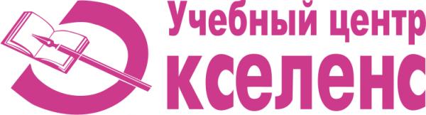 Логотип компании Экселенс