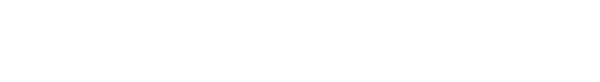Логотип компании Salamander