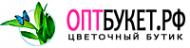 Логотип компании Анастасия