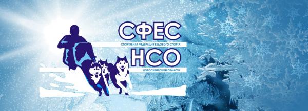 Логотип компании Спортивная федерация ездового спорта Новосибирской области