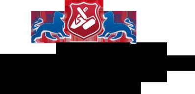 Логотип компании Два льва