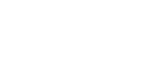 Логотип компании Стелла