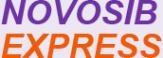 Логотип компании Новосибэкспресс