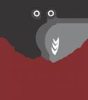 Логотип компании Серебряная Сова